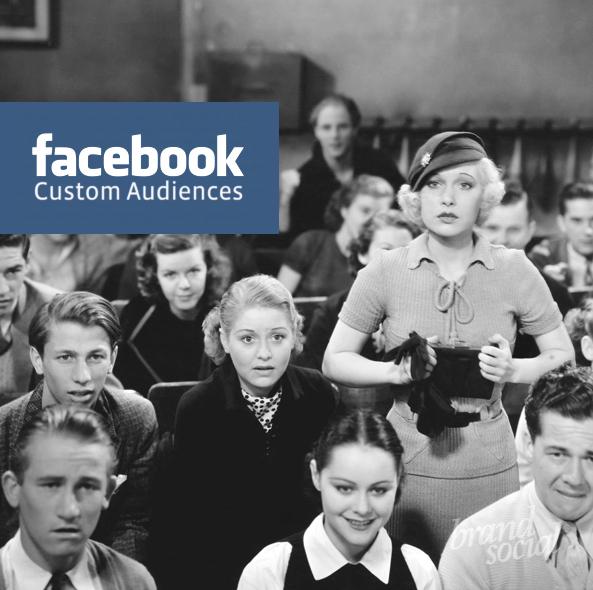 custom audience de facebook